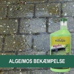 Alge/Mos Bekæmpelse