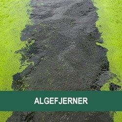 Algefjerner