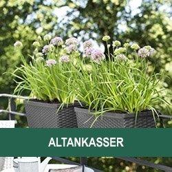 Altankasser