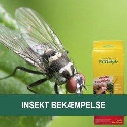 Insekt Bekæmpelse