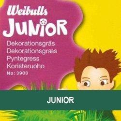 Juniorfrø