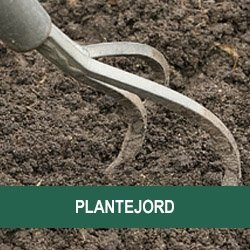 Plantejord