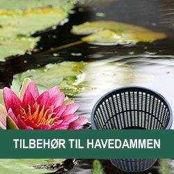 Til Havedammen