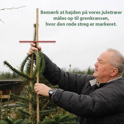 Mål af juletræ