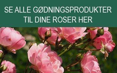 Gødningsprodukter til roser