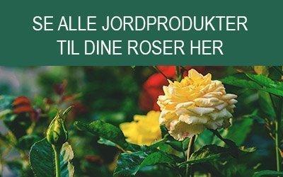 Jord til roser