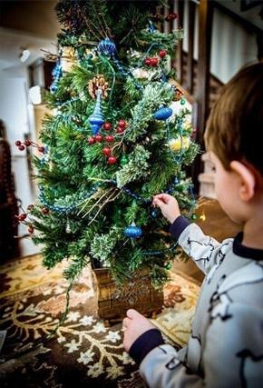Juletræ i potte med pynt